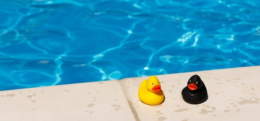 gelbe und schwarze Quietscheente stehen am Poolrand