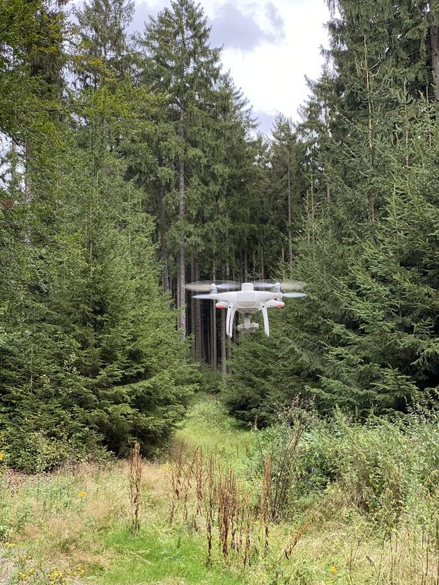 Drohne im Wald zur Überwachung des Baumbestandes