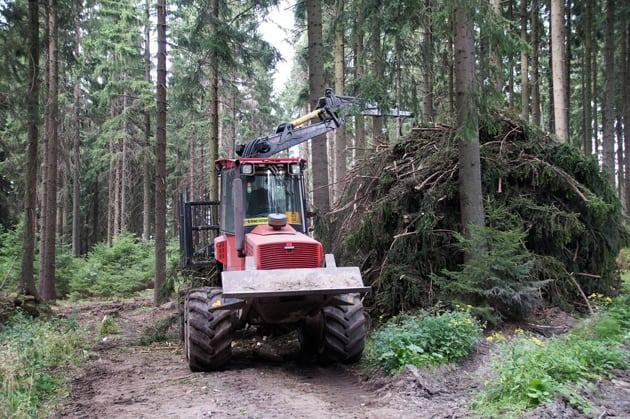 Fahrzeug im Wald räumt tote Bäume weg