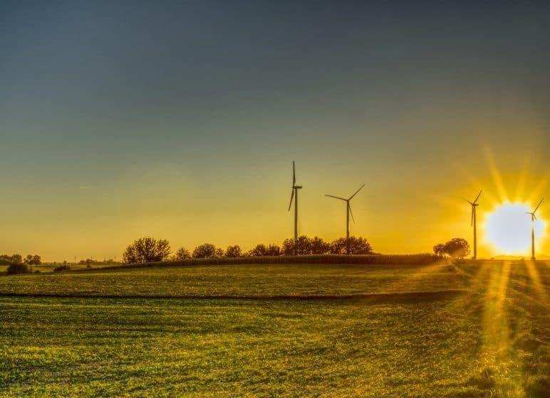Sonnenaufgang mit Windrädern, Klimaschutz