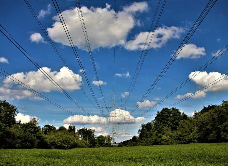 Ökologisches Trassenmanagement, Stromtrasse mit Wiese und Bäumen
